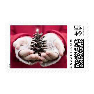 Hands holding a pine cone with a silver star postage
