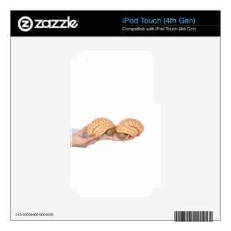 Hands holding model human brain on white iPod touch 4G decal