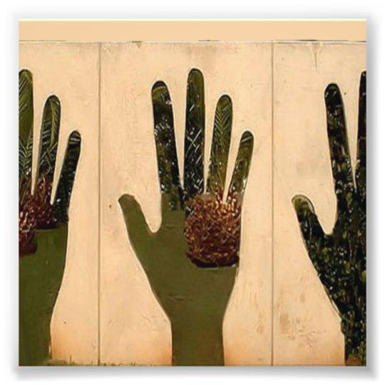 Hands Photo Print