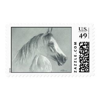 Handsome Boy Postage Stamp