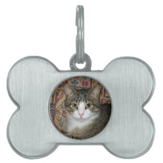 Handsome Fellow Pet Tag