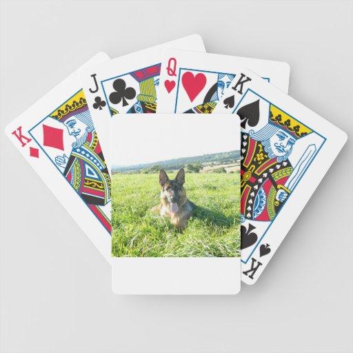 Handsome German Shepherd Dog Bicycle Playing Cards