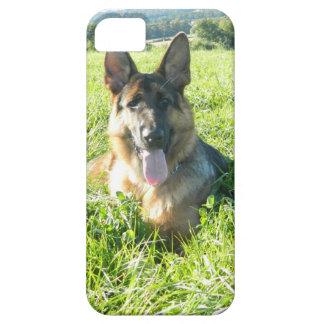 Handsome German Shepherd Dog iPhone SE/5/5s Case