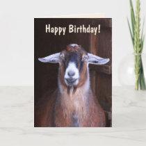 Handsome Goat Birthday Card