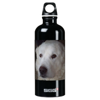 Handsome Great Pyrenees Dog Aluminum Water Bottle