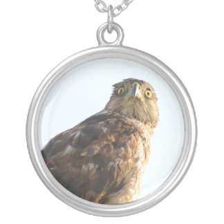 Handsome Hawk bird Necklace