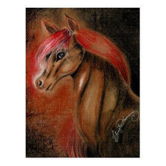 Handsome Horse Postcard