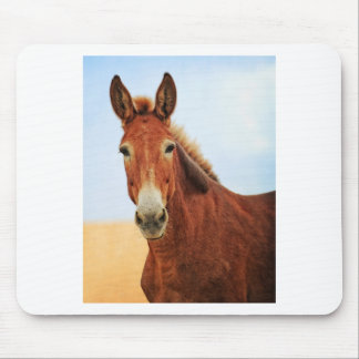 Handsome Jackass Mouse Pad