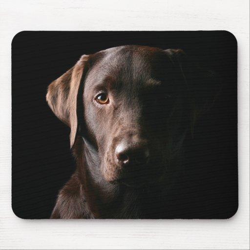 Handsome Labrador Retriever Mousepad