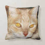 Handsome Maine Coon Cat Face Pillows
