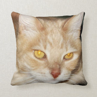 Handsome Maine Coon Cat Face Throw Pillow