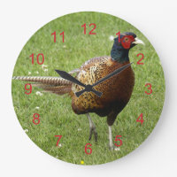 Handsome Male Pheasant Walking in Grass Large Clock