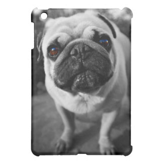 Handsome Pug Case For The iPad Mini