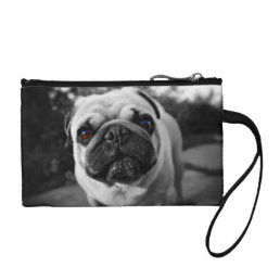 Handsome Pug Coin Wallet