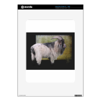 Handsome pygmy goat skin for the iPad