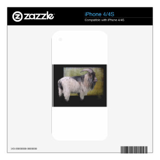 Handsome pygmy goat skins for the iPhone 4