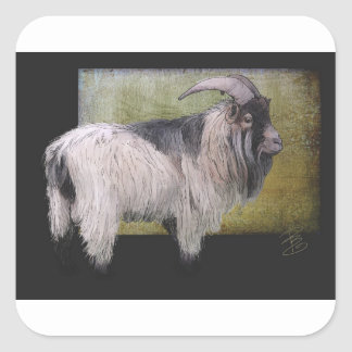 Handsome pygmy goat square sticker