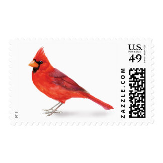 Handsome Red Cardinal Postage