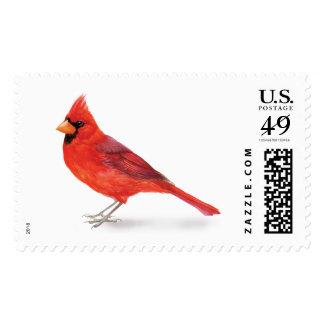 Handsome Red Cardinal Postage Stamp