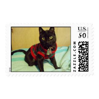 Handsome Seimei postage stamp