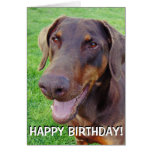 Handsome smiling red doberman greeting card