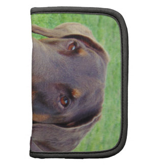 Handsome smiling red doberman folio planners