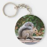 Handsome Squirrel Keychains
