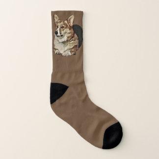 Handsome Tricolor Corgi Socks