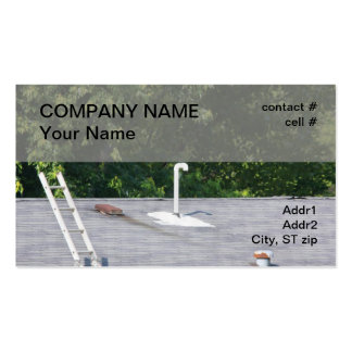 handyman roof repair Double-Sided standard business cards (Pack of 100)