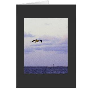 Hang Glider Card