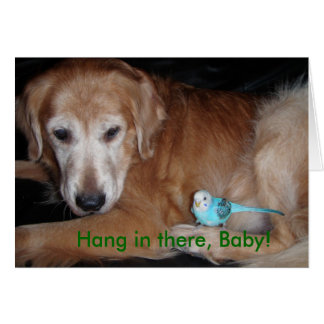 Hang in there, Baby! Card! Card