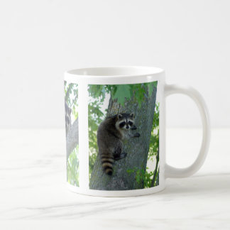 Hang In There Coffee Mugs