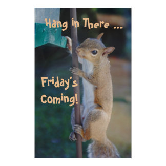 Hang in There Friday sComing Squirrel Posters