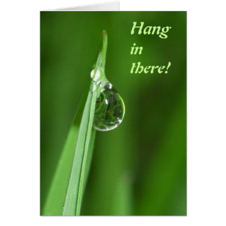 Hang in there - Green grass and water droplet Card