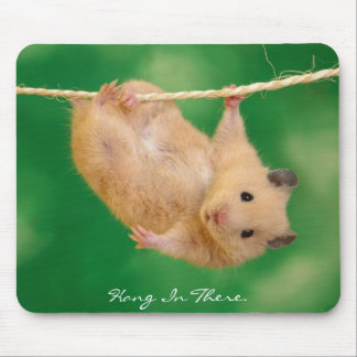 Hang in There Hamster Mouse Pads