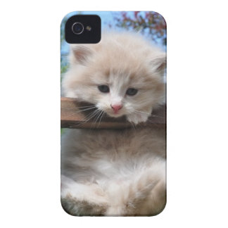 Hang in there iPhone 4 cover