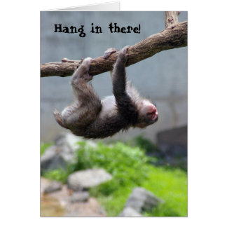 Hang in there Monkey card