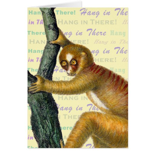 hang in there monkey card zazzle