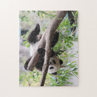 Hang in there! Panda Puzzle