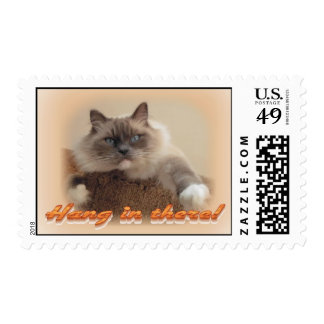 Hang in there! stamp