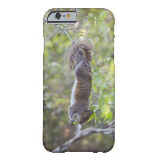 Hang On! iPhone Case