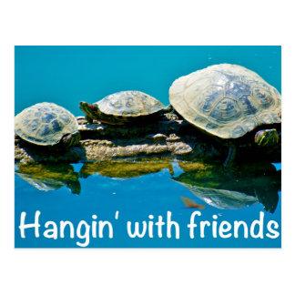 Hangin con los amigos postal