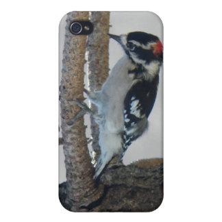 Hangin hacia fuera por las pimientas de Leslie iPhone 4 Protector