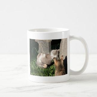 Hangin in There Coffee Mugs