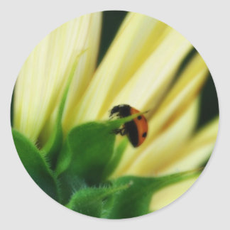 Hangin' Ladybug Stickers
