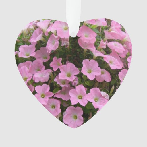 Ready Made Flower Hanging Baskets : Hanging basket of pink flowers zazzle