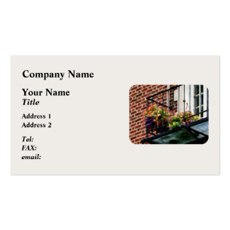 Hanging Basket on Fire Escape Double-Sided Standard Business Cards (Pack Of 100)