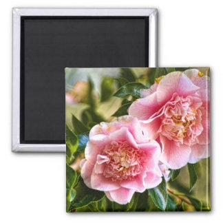 Hanging Camellias Fridge Magnet