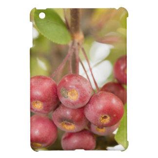 Hanging Chokecherries Case For The iPad Mini