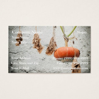 Hanging Gourd Business Card